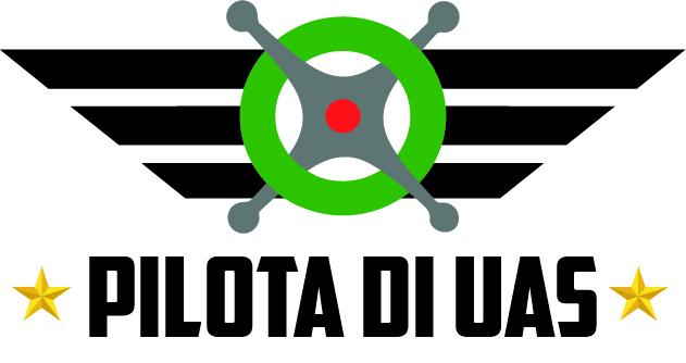 Logo pilota uas