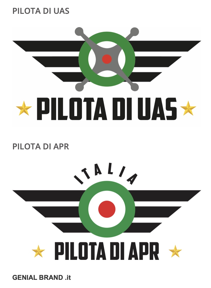Pilota Uas